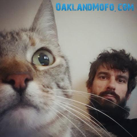 cat town oakland
