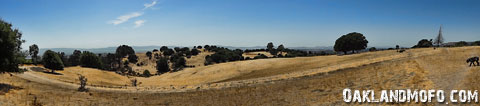 knowland park panoramic photo