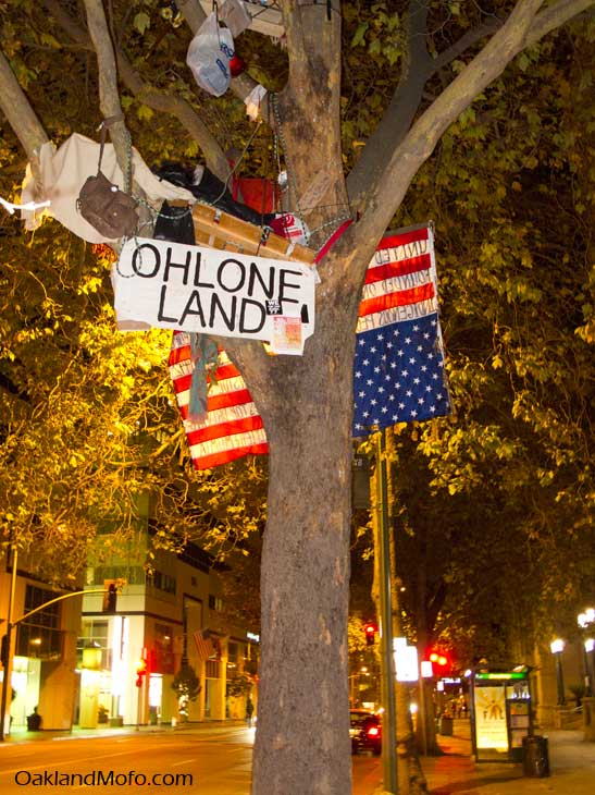 running wold occupy oakland tree sitter