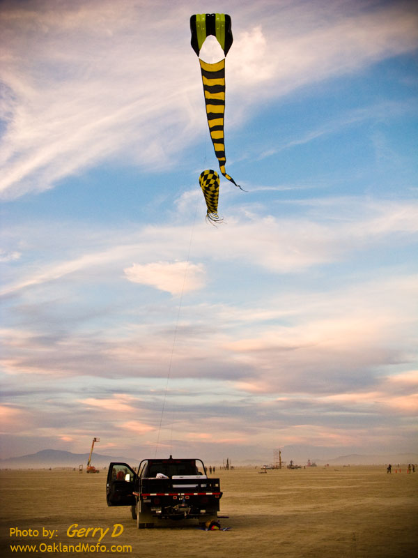 Kite on the Playa